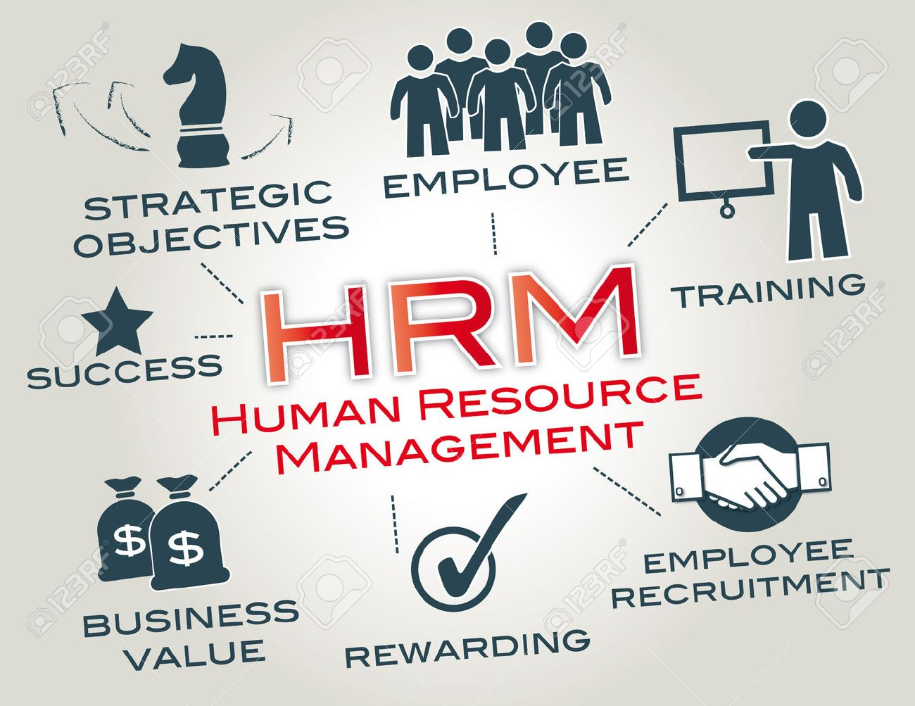 27951917-human-resource-management-is-a-function-in-organizations-designed-to-maximize-employee-performance-i